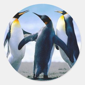 Penguins from Alaska Classic Round Sticker