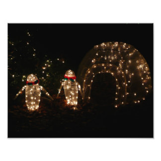 Penguins Holiday Light Display Photo