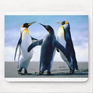 Penguins Mouse Pad