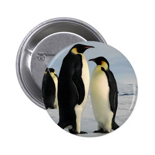 penguins-poop-from-outer-space button