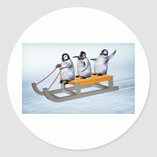 Penguins Sled Classic Round Sticker