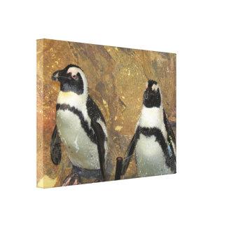 Penguins Stretched Canvas Prints