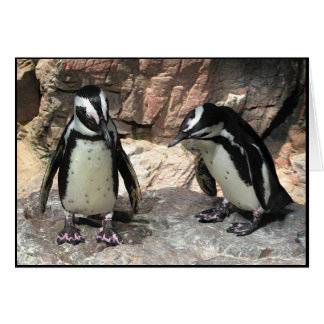 Penguins Thank You Card