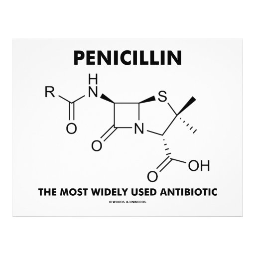 Penicillin Most Widely Used Antibiotic (Chemistry) 21.5 Cm X 28 Cm Flyer