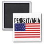 Pennsylvania, Stars and Stripes Square Magnet