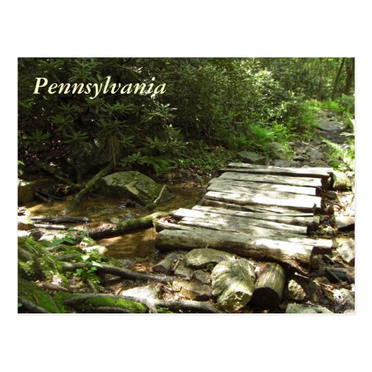 Pennsylvania Wooden Bridge Postcard
