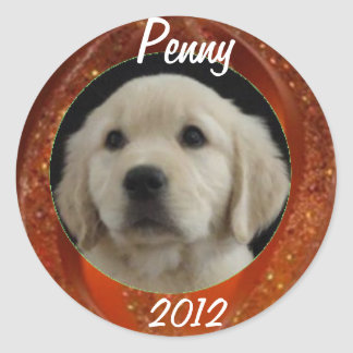 Penny 2012 Sticker Sheet
