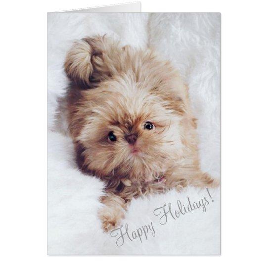 Penny orange liver Shih Tzu puppy Christmas card