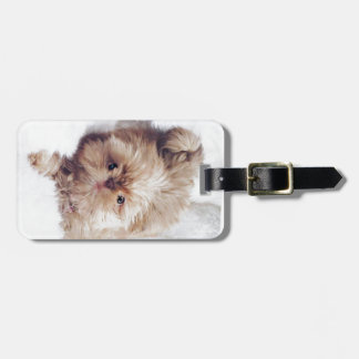 Penny the orange liver Shih Tzu on Cloud 9 Luggage Tag