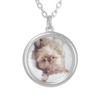 Penny the orange liver Shih Tzu on Cloud 9 Silver Plated Necklace