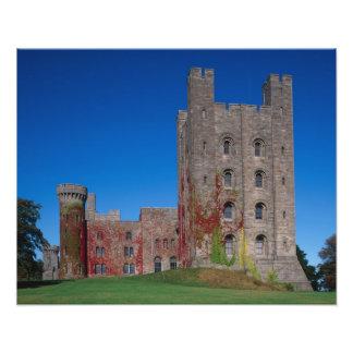 Penrhyn Castle, Gwynedd, Wales 2 Photo Art