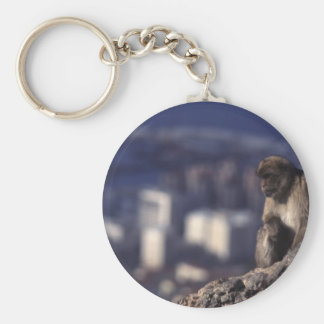 Pensive Monkey in Gibraltar Basic Round Button Key Ring