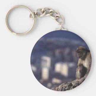 Pensive Monkey in Gibraltar Basic Round Button Key Ring
