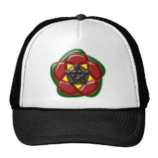 Pentagram pentagon approximately mesh hat