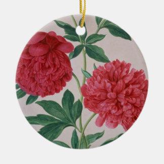 Peonies, plate 46 from the Nassau Florilegium (w/c Round Ceramic Decoration