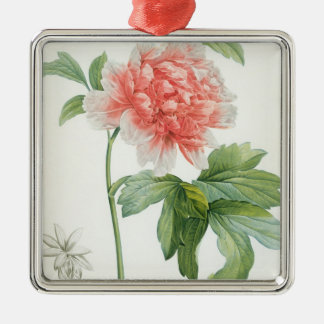 Peony, 1799 (colour stipple print) christmas ornament
