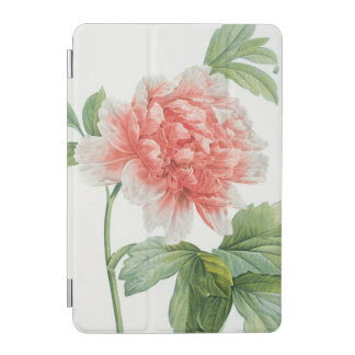 Peony, 1799 (colour stipple print) iPad mini cover
