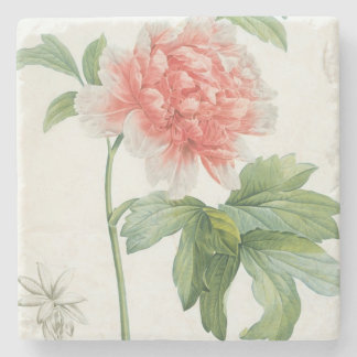 Peony, 1799 (colour stipple print) stone beverage coaster