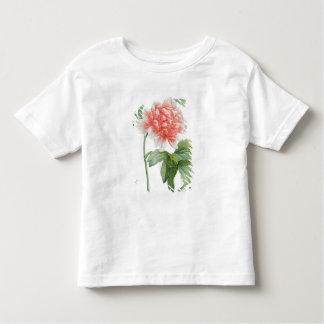 Peony, 1799 (colour stipple print) toddler T-Shirt