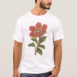 Peony, Antique Flower Print T-Shirt
