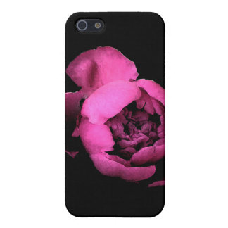 Peony Blossom iPhone 5/5S Case