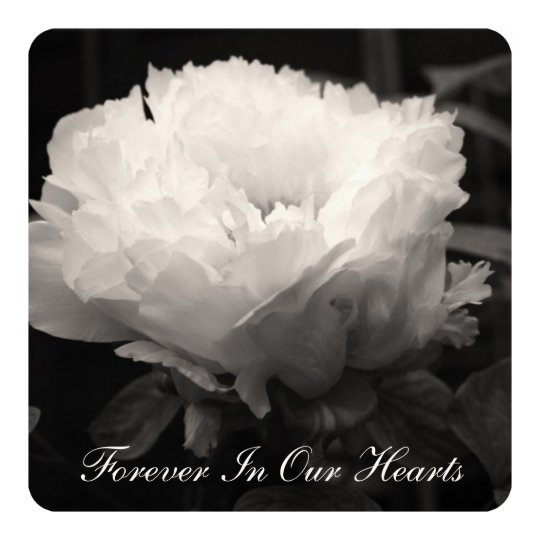Peony Floral Photography 2 Funeral Announcement