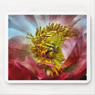 Peony Flower Mousepads