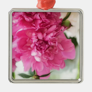 Peony Flowers Close-up Sketch Silver-Colored Square Decoration