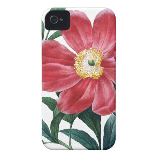 Peony Redoute botanical illustration iPhone 4 Case-Mate Case