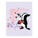 Pepe Le Pew Love is in the Air Post Card