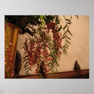 Pepper Berries Poster