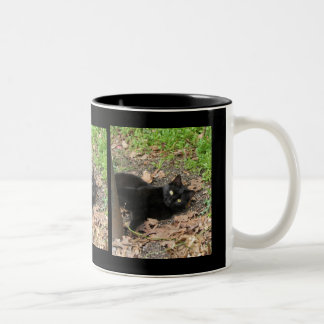 Pepper Cat Katrina Survivor Mug