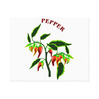 Pepper plant graphic with word pepper stretched canvas prints