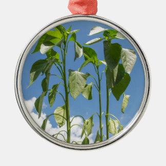 Pepper plant plug Silver-Colored round decoration