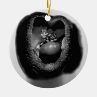 Pepper reproduction christmas ornament
