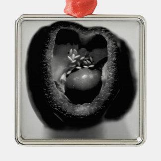 Pepper reproduction Silver-Colored square decoration