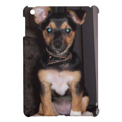 Pepper the Dog iPad Mini Cases