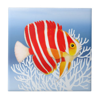 Peppermint Angelfish Tile