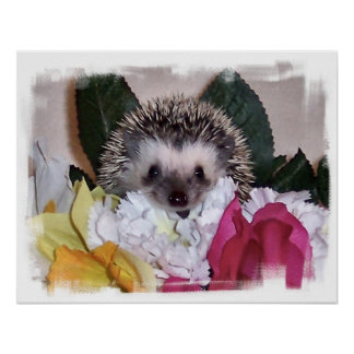 Pepperpot the Hedgehog Poster