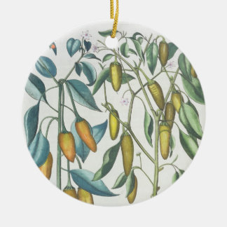 Peppers: 1.Piper Indicum filiquis flavis; 2.Piper Round Ceramic Decoration