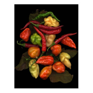 Peppers Postcard
