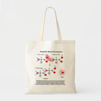 Peptid Bond Formation Diagram Bags