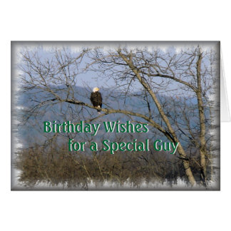 Perched Eagle-cutomize any occasion Greeting Cards