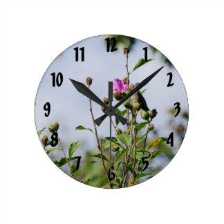 Perched Hummingbird Round Clock