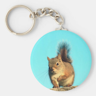 Perched Squirrel Keychain