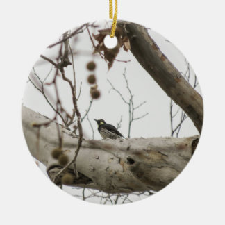 Perched Woodpecker - Christmas Ornament