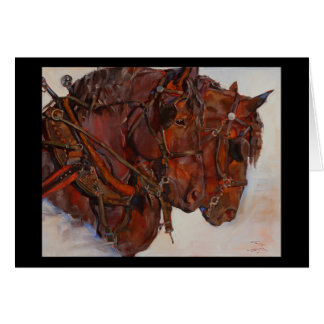 Percheron draft horse fine art card