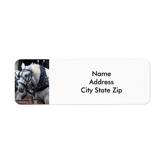 Percheron Draught   Horse Return Address Label