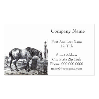 Percheron Horse Vintage Drawing Art Pack Of Standard Business Cards