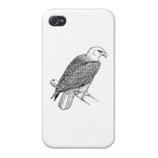 Perching American Bald Eagle Illustration iPhone 4 Cover